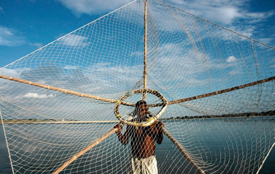 Fisherman casts his net in the waters of River Ganges in Allahabad
